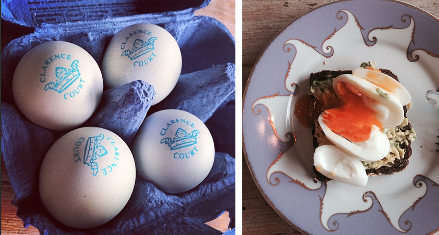 eggs together